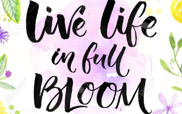 c life - live life in full bloom