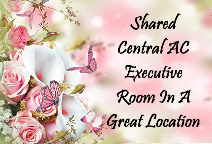 Shared Central AC Executive Room In A Great Location