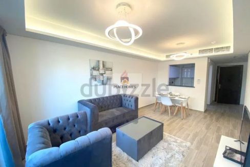 BRAND NEW   CLASSY FURNISHED   UPSCALE 1BR